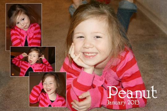 Peanut 1-2013