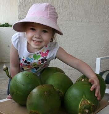 peanut coconuts