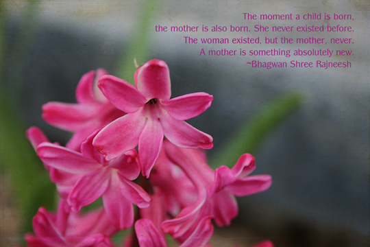 Mom Anniv quotes72