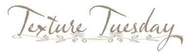Texture Tuesday