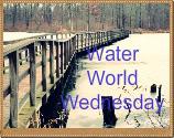 Water World Wednesday