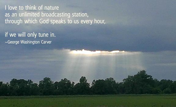 Nature quotography