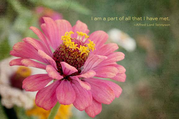 I am part of all that I'vemet