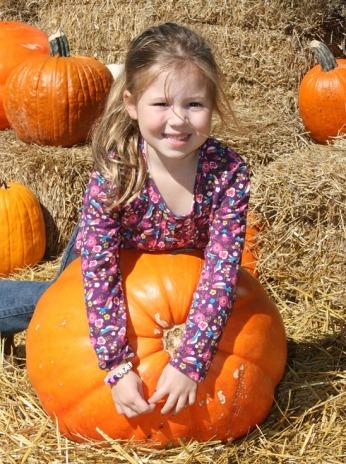 peanut pumpkin 4
