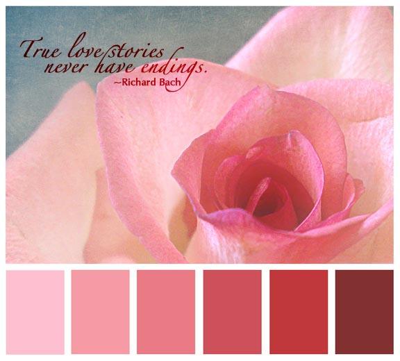 FF rose pallette