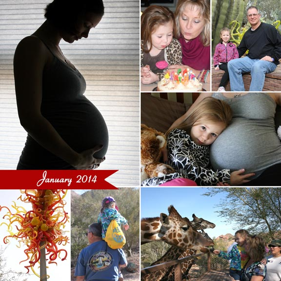 January 2014 collage