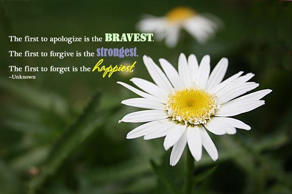 forgiveness daisy 72