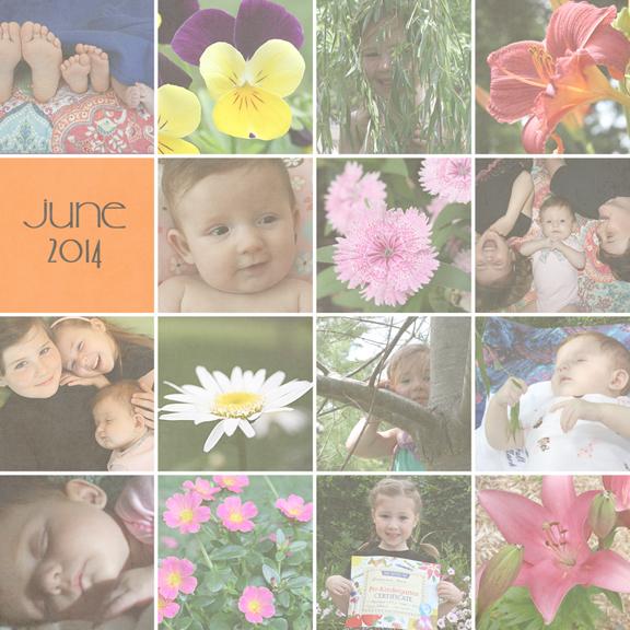 June 2014 collage72