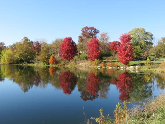 Autumn '14 4