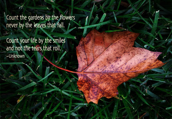 Never count your life by the leaves thatfall