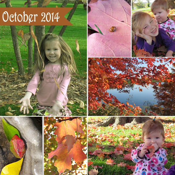 October 2014 collage72