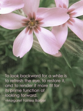 pink phlox w-quote