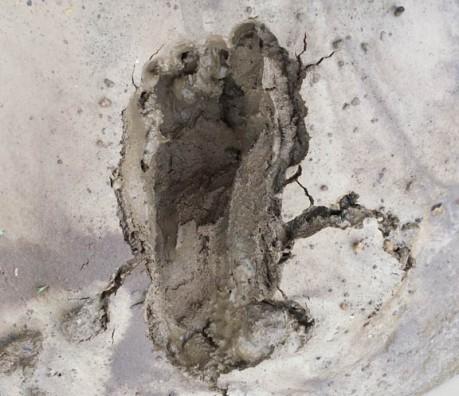 mud print