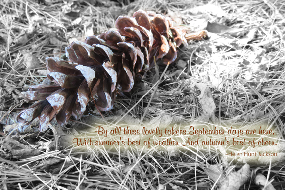 autumn-quotography72